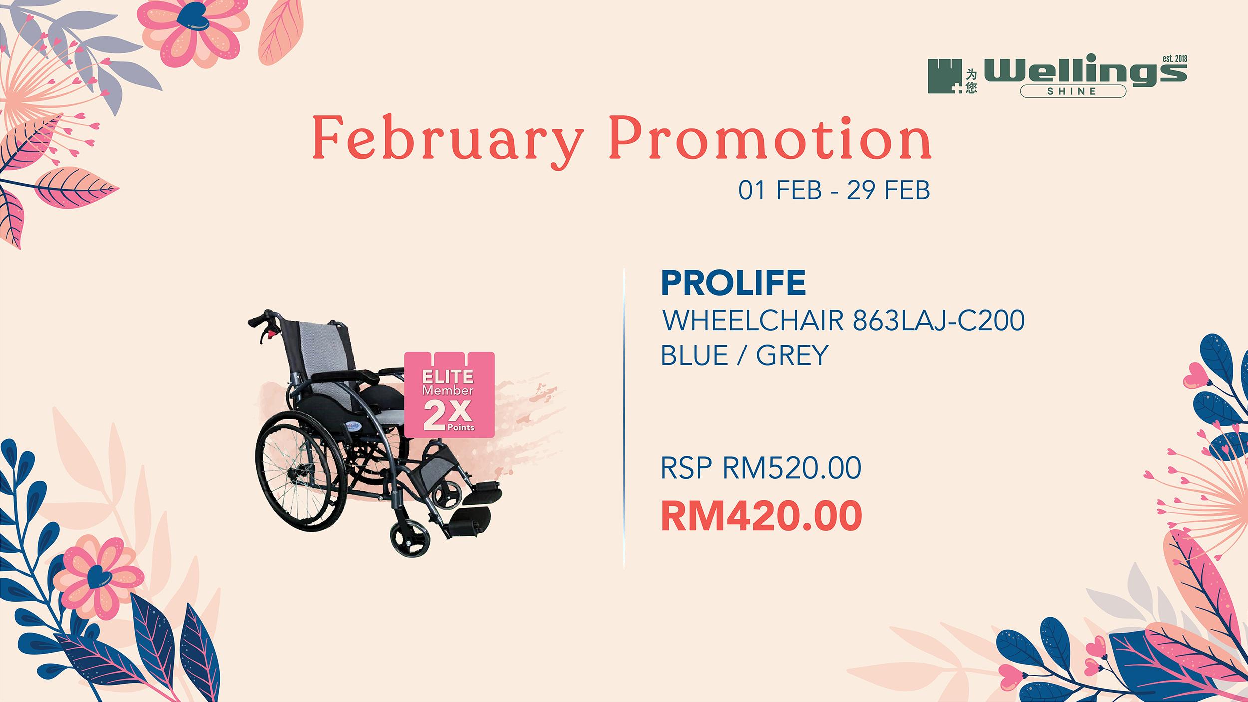 prolife-wheelchair