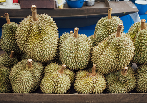 uncle-john-durian